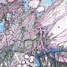 Лукьянчук Кира. Серия «Алиса в стране чудес» (фрагмент)