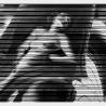 Павин М. «Королевство кривых зеркал»