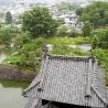 АНО «Благое дело». «Япония»