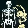 Гусакова Л. Плакат «Берегите студента»