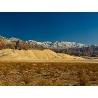 Тарасенко Г.О. «Песчанные дюны долины Эврика»,  штат Калифорния (США)