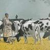 Маша Холмогорова. «Пастух»