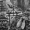 Владимир Позигун. Из серии «Стрекозы и острова», «Токио. Акасака, цикады»